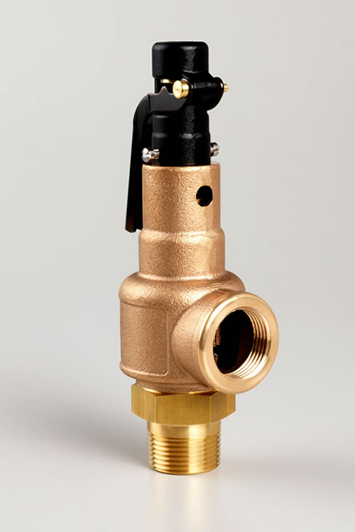 Series 560 570 ASME Section I V Stamp VIII UV High Capacity Safety Valves